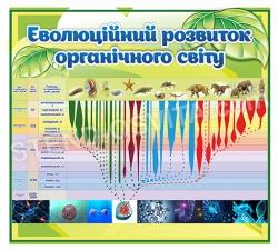 Стенд «Еволюційний розвиток органічного світу»