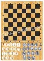 Жестяной стенд с магнитами «Шахматы»